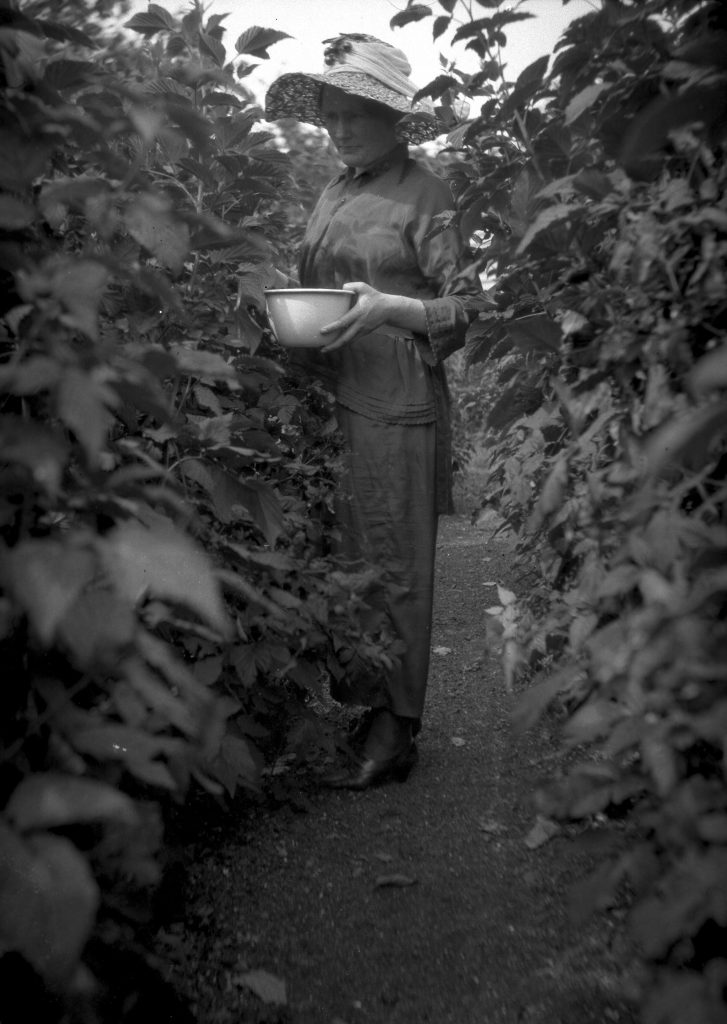 Mary MacDiarmid in the vegetable garden